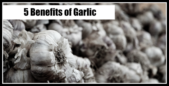 5 benefits of garlic